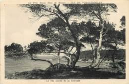 83 - ILE DE PORQUEROLLES - Porquerolles