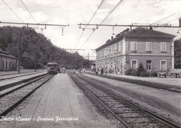 BASTIA - CUNEO - STAZIONE FERROVIARIA CON TRENO - FERROVIE - TRASPORTI - Cuneo