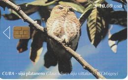 101 TARJETA DE CUBA DEL SIJU PLATANERO (BUHO-OWL) - Cuba