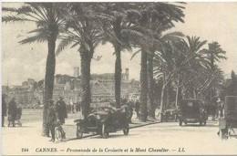 CANNES : Promenade De La Croisette Et Le Mont Chevalier - Cannes