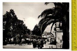 1957 AFRAGOLA Piazza Belvedere FG V  SEE 2 SCANS Animata, Necchi Macchine Per Cucire - Afragola