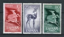 Sahara 1961. Edifil 190-92 ** MNH. - Sahara Spagnolo