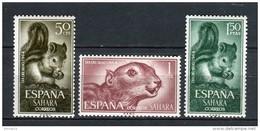 Sahara 1964. Edifil 236-38 ** MNH. - Sahara Spagnolo