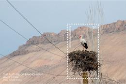 Azerbaijan Stamps 2019 The Nature Of Nakhchivan. White Stork Birds - Cicogne & Ciconiformi