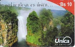 TARJETA DE BOLIVIA DE Bs 10 DE LA NATURALEZA ES UNICA (CATARATA-WATERFULL) BRILLO - Bolivia