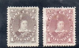 TERRE-NUEVE 1880 SANS GOMME - Newfoundland
