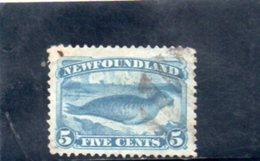 TERRE-NUEVE 1880 O BLU PALE - Newfoundland