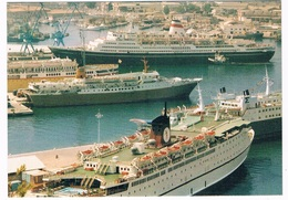 SCH-947  ANCONA : With Several Cruise-Ships - Steamers