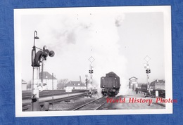 Photo Ancienne - Gare D' ARGENTAN - Grue Hydraulique & Locomotive - 1967 - Chemin De Fer Train Rail Tender Bretagne - Trains