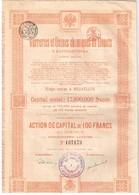 Ancienne Action - Verreries Et Usines Chimiques De Donetz à Santourinovka - Titre De 1920 N° 137174 - Russland