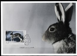 Norvège. Norway..Lièvre. Hare Carte Maximum - Hasen