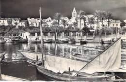 ESPANA Espagne ISLAS BALEARES Baléares : Muelle De Pescadores / Quai Des Pêcheurs - CPSM Photo Blanc Format CPA - - Palma De Mallorca