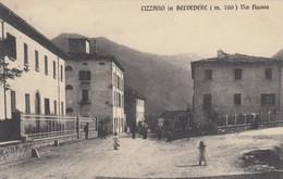 LIZZANO IN BELVEDERE-BOLOGNA-VIA NUOVA -BELLISSIMA CARTOLINA VIAGGIATA IL 25-9-1911 - Bologna