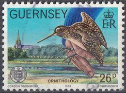 GUERNSEY - 1982 - Yvert 251 Usato, Come Da Immagine. - Guernesey