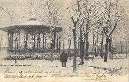 Roanne (Loire) Promenades Populle, Le Kiosque à Musique Sous La Neige En Hiver - Librairie Henry - Carte Animée - Roanne