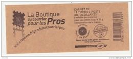 Carnets Marianne De Baujeard N° 4197 C 8 - Carnets