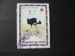 TIMBRE  WWF  AUTRUCHE   OBLITERE - Straussen- Und Laufvögel
