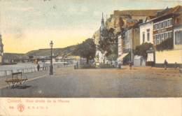 Dinant - Rive Droite De La Meuse - Dinant