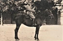 Rare Photo Carte Soldat Du 129 Au Col  Sur Son Cheval Et Clairon - 1914-18