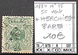 D - [844208]TB//O/Used-Belgique 1884 - N° 45, Relais (étoiles) *HERCHIES*, 5c Vert, RARE, Lions, Félins - Marcofilia