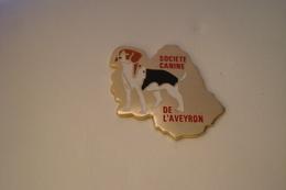 20191218-3839 SOCIETE CANINE DE L'AVEYRON - CHIEN - Animals