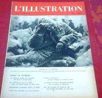WW2 L'Illustration N°5056 Janvier 1940 Guerre Finlande,Avant Poste Vosges Maginot,Photos Strasbourg évacue - L'Illustration