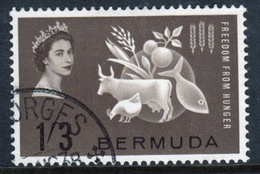 Bermuda Elizabeth II 1963 Single Stamp To Celebrate Freedom From Hunger. - Bermuda