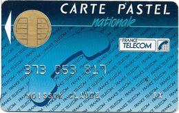 CARTE A PUCE CHIP CARD CARTE TÉLÉPHONE SALON DÉMONSTRATION GSM CARTE PASTEL NATIONALE - France