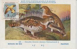 Bulgarie Carte Maximum Oiseaux 1961 Gélinotte 1065 - Bulgarien