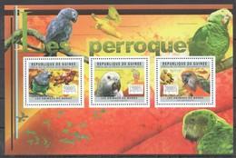 BC267 2011 GUINEE GUINEA FAUNA BIRDS LES PERROQUETS PARROTS 1KB MNH - Perroquets & Tropicaux