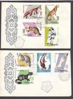 Mongolia 1966 - Fur Animals And Their Economic Use, Mi-Nr. 410/17, 2 FDC - Mongolia