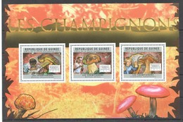 BC281 2011 GUINEE GUINEA NATURE MUSHROOMS LES CHAMPIGNONS 1KB MNH - Paddestoelen