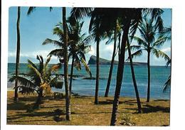 ILE MAURICE---MAURITIUS--le Coin De Mire Naviguant Derrière Les Cocotiers De Cap Malheureux---voir 2 Scans - Mauritius