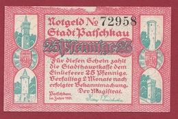 Allemagne 1 Notgeld 25 Pfenning  Stadt Patschkau (  RARE) Dans L 'état N °5335 - [ 3] 1918-1933 : Repubblica  Di Weimar