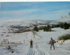 42 - Sauvain - Pratique Du Ski De Fond - Hiver - Neige - Voir Scans Recto-Verso - Andere Gemeenten