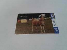 Uruguay  - Nice Phonecard 449a - Uruguay