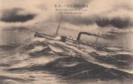 Nederland - Rotterdamsche Lloyd - SS Tambora - By Storm Weder / In Stormy Weather - Dampfer