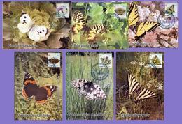 Kazakhstan 2019. Maxicard (Maximum Cards). Butterflies. Fauna. - Kazakhstan