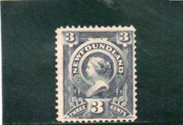 TERRE-NUEVE 1890-4 SANS GOMME - Newfoundland