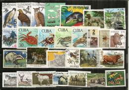 Beau Lot De Timbres Faune / Oiseaux 28 (Suède,Cuba,Australie,Panama,etc)  Bonne Qualité - Alla Rinfusa (max 999 Francobolli)