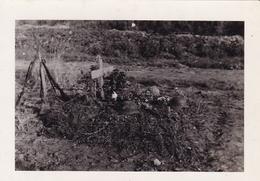 PHOTO ORIGINALE 39 / 45 WW2 WEHRMACHT FRANCE AMIENS SÉPULTURES SOLDATS ALLEMANDS MORTS AU COMBAT - Guerra, Militari