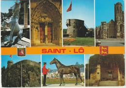 Manche :  SAINT  LO :  Vue  , Cheval , Tour ... - Saint Lo