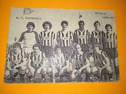 """Postcard Portuguese """" S. C. Espinho - Época 1983/1984 - Edição Major """" - Fussball"""