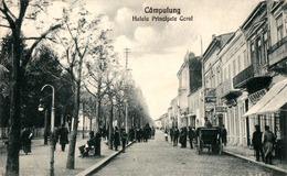 CÂMPULUNG MUSCEL : ALEEA PRINCIPELE CAROL - COAFOR / DROGUERIE / ... DIANA ! - 1929 (ad470) - Romania