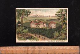 SAINT ST NABORD Vosges 88 : St Anna Südvogesen  Sainte Anne Besitzerin Wwe Schuller Und Kinder - Saint Nabord