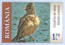 930  Alouette Des Champs: PAP 2019 - Eurasian Skylark On Imprinted Stamp. + Golden Eagle Aigle Royal - Zangvogels