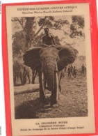EXPEDITION CITROEN / LA CROISIERE NOIRE / L ELEPHANT D AFRIQUE / CONGO BELGE / ECOLE DE DRESSAGE DE LA FERME D API / - Centraal-Afrikaanse Republiek