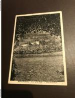 Rumbeke - Park - Zicht Op Het Park   (Roeselare ) - Uitg. Albert - 1935 - Roeselare
