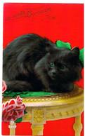 Chat Noir- Black Cat -katze- Zwarte Poes Op Tafel- Gatto - Katten