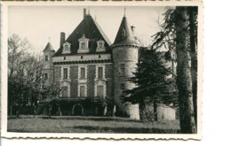 79600 BOUSSAIS - Le Château - Photo Utilisée Comme Carte Postale - Otros Municipios
